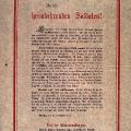 Der Rat soll den Frieden sichern, die Wahl zur Nationalversammlung vorbereiten und begrüßt die heimkehrenden Soldaten (Plakat vom 21. November 1918).