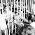 """Nicht immer ist sich die Arbeiterschaft einig: Arbeitswillige und streikende """"Gastarbeiter"""" bei Ford in Köln 1973."""